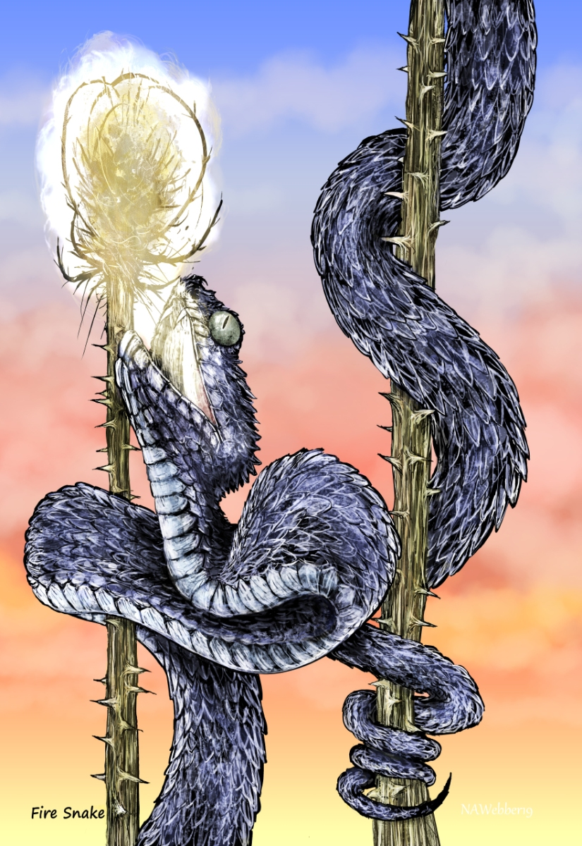Fire Snake bookmark